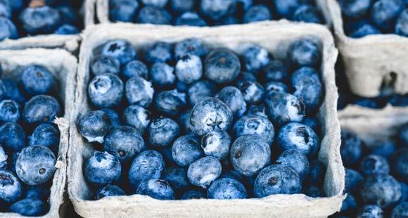 Bio-Lebensmittel - Anbau, Erzeugung und Handel
