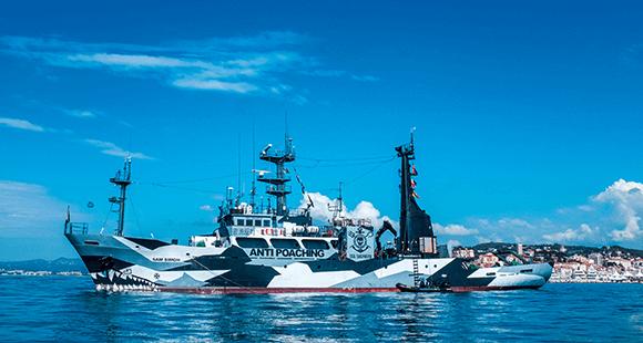 Größte private Marine: Eines von 13 Schiffen der Sea-Shepherd-Flotte